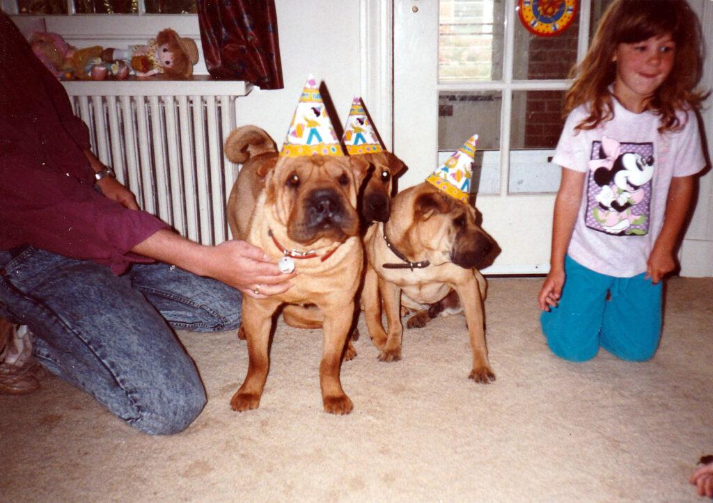 Birthday Dogs!